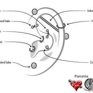 Curso de Body Piercing Intermediário