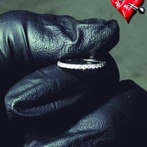 Segmento articulado cravejado 1.0 x 8mm - Titânio